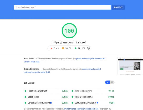 Özelleştirme amigurumi.store 2021 07 17 140620 developers.google.com