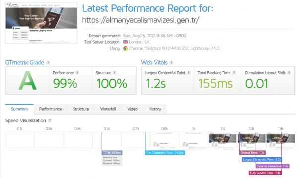 1 Saatte Wordpress Hızlandırma 100 almanyacalismavizesi.gen .tr
