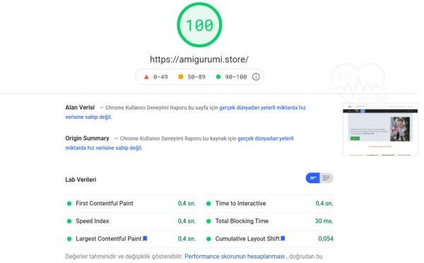 1 Saatte Wordpress Hızlandırma amigurumi.store 2021 07 17 140620 developers.google 1